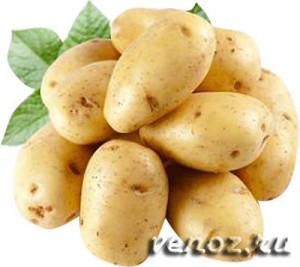 Внешний геморрой: лечение картофельными свечами