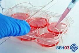 Тромбоз: диагностика молекулярно-генетический анализ