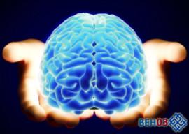 bolezni-mozga-i-golovi