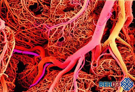 Резидуальная энцефалопатия