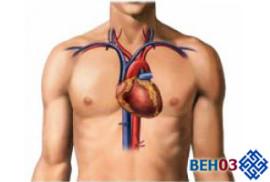 ateroskleroz-aorti