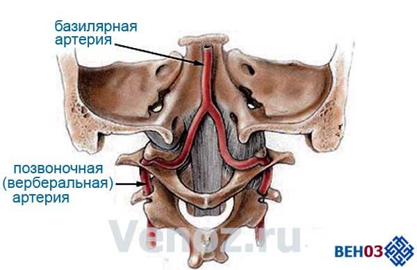 vertebro-bazilyarnaya-nedostatochnost-vbn3