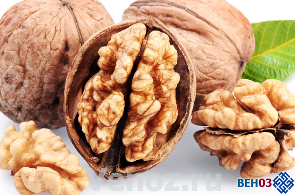 Грецкие орехи в медицине