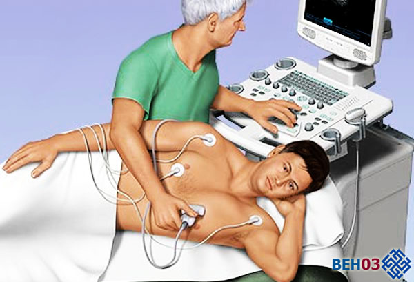 Эхокардиография сердца что это такое и как ее делают