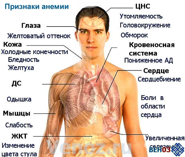 Патологической причиной пониженного гемоглобина может являться анемия.